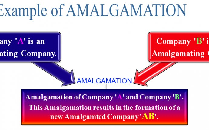 What is Amalgamation? Definition, Meaning and Example